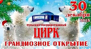 Тульский цирк афиша январь 2016 новогодняя программа Новогодний феерверк
