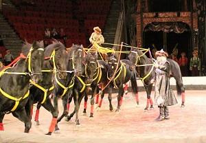 Тульский цирк афиша сентябрь 2016